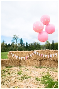 Haybales and Large Scale Balloons make a big impact on a small budget.