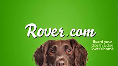 Dog sitting-Rover