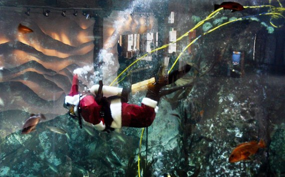 Best Offline Marketing - Diving Santa